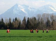 Intercanvi dels PiCs a Suïssa